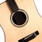 Auden Guitars Dreadnought Colton Spruce Full Body Front Close Strings