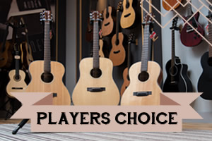 Players Choice range of Auden Guitars - front page graphic