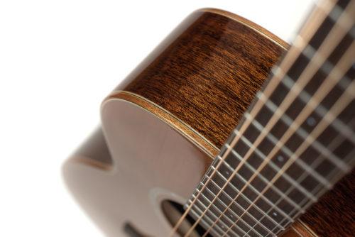 Artist Mahogany Emily Rose guitar - strings image