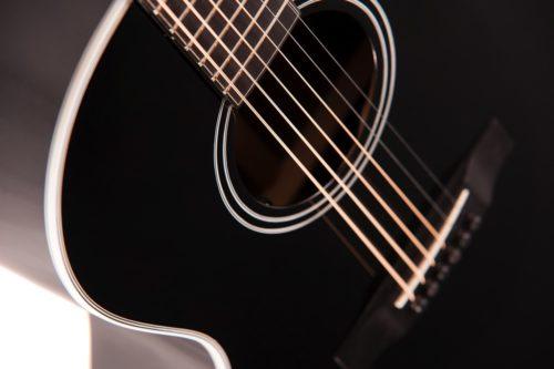Auden Chester black series fullbody strings