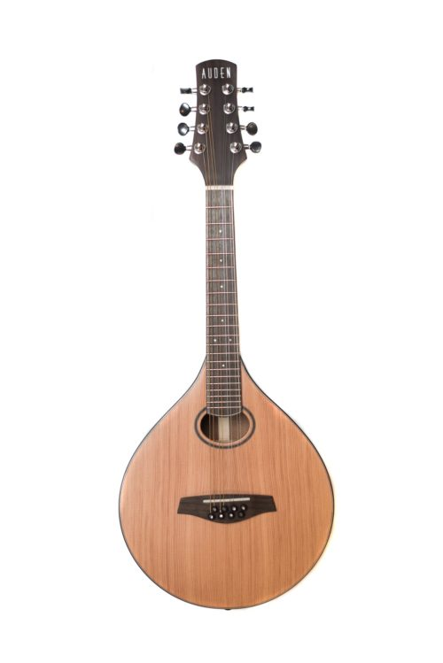 Auden Celtic Mandolin 2R - Rosewood front