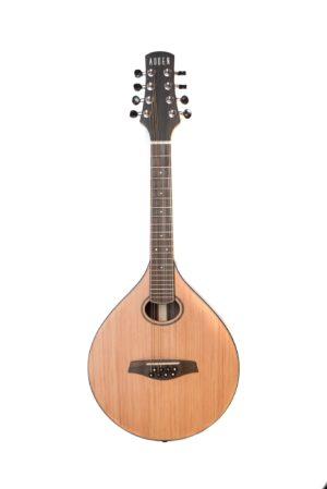 Auden Celtic Mandolin 3R - maple front