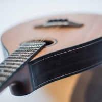 Auden Celtic Mandolin 2R - Rosewood studio image