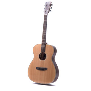 Bowman Players Choice from Auden Guitars - featured image square