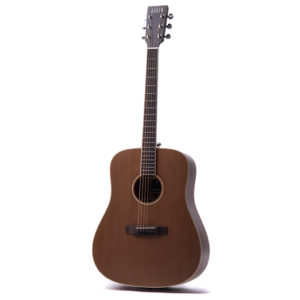 Colton Neo acoustic guitar by Auden Guitars - front full square image