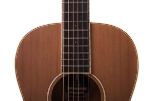 Marlow Neo - acoustic guitar by Auden Guitars. Front body image.