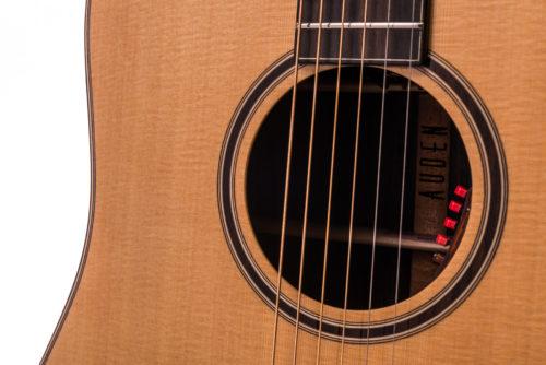 Artist Rosewood Colton Spruce Fullbody - soundhole image