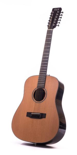 Artist Rosewood Colton 12 String Cedar Fullbody - front image