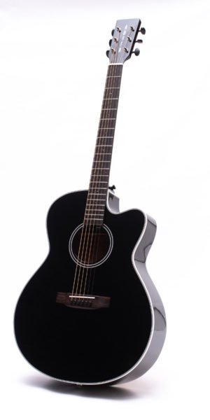 Black Series Austin Cutaway - front image